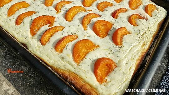 Tvarohovo-kôprový koláč s marhuľami